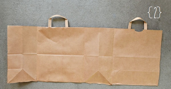 Recycled Trader Joe's Bag