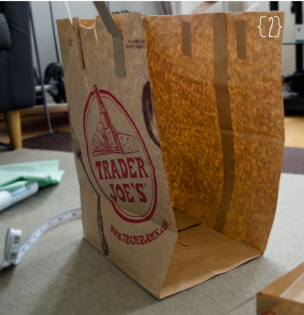 Trader Joe's Wine Bag