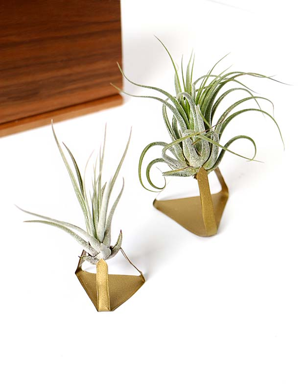 DIY Metal Air Plant Stand